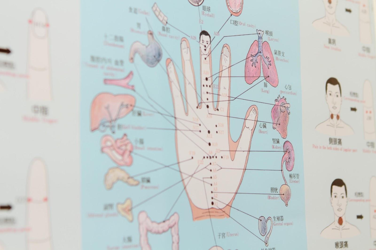 手のツボ 高麗手指鍼
